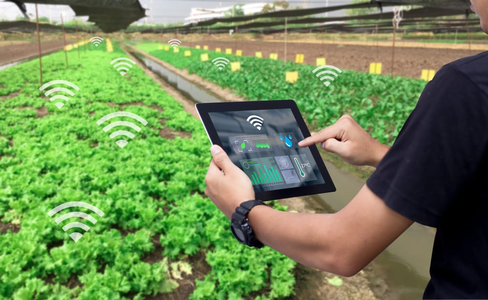 IoT in Agriculture: 5 Technology Use Cases for Smart Farming